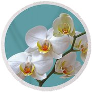 White Orchids On Ocean Blue Round Beach Towel