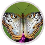 White Peacock Butterfly Round Beach Towel