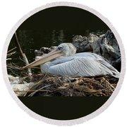 White Pelican 1 Round Beach Towel