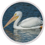 White Pelican Swimming Round Beach Towel