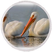 White Pelicans Round Beach Towel