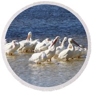 White Pelicans On Sanibel Island Round Beach Towel
