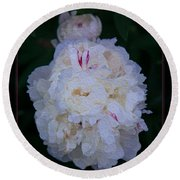 White Peony And Companion Abstract Flower Painting Round Beach Towel