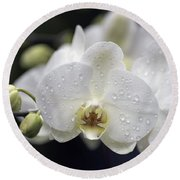 White Phalaenopsis With Water Drops 5797 Round Beach Towel