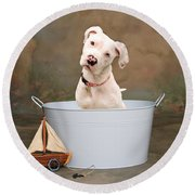 White Pitbull Puppy Portrait Round Beach Towel by James BO  Insogna