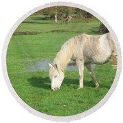 White Pony On The Moors Round Beach Towel
