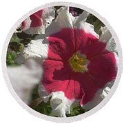White-red Petunia Round Beach Towel