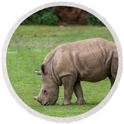 White Rhino 12 Round Beach Towel