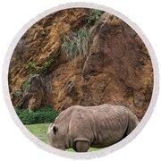 White Rhino 13 Round Beach Towel