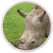 White Rhino 15 Round Beach Towel