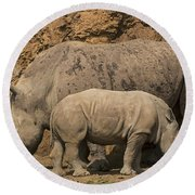 White Rhino 4 Round Beach Towel