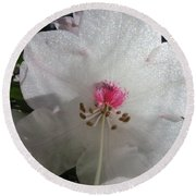 White Rhododendron Blossom Round Beach Towel