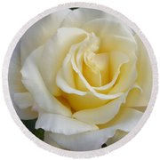 White Rose Named Ray Of Sun Round Beach Towel