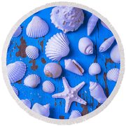 White Sea Shells On Blue Board Round Beach Towel