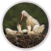 White Stork Round Beach Towel