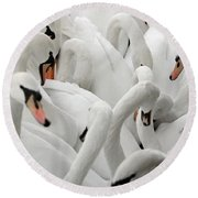 White Swans Round Beach Towel