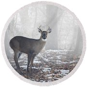 White Tailed Deer Buck In The Mist Round Beach Towel