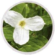 White Trillium Flower Round Beach Towel