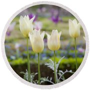 White Tulips In Parisian Garden Round Beach Towel