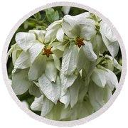 White Veil Of Tropical Flowers Round Beach Towel