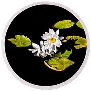 White Water Lilies Round Beach Towel by Frances Hattier