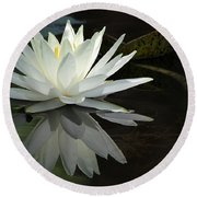 White Water Lily Reflections Round Beach Towel