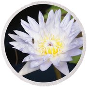 White Waterlily With Fly...   # Round Beach Towel