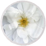 White Wild Rose Round Beach Towel