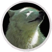 White Wolf In The Shade Round Beach Towel