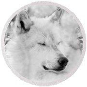 White Wolf Shut Eye Round Beach Towel