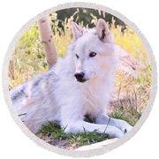 White Wolf Taking It Easy Round Beach Towel