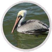 Whiteheaded Pelican Round Beach Towel