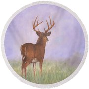 Whitetail Round Beach Towel by David Stribbling