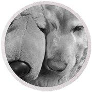 Who Has The Biggest Nose Golden Retriever Dog  Round Beach Towel