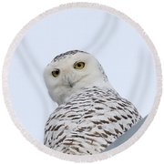 Who You Lookin' At? Round Beach Towel