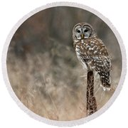 Whooo Goes There Round Beach Towel