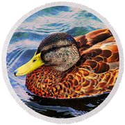 Wild Duck  Round Beach Towel