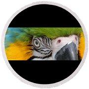 Wild Eyes - Parrot Round Beach Towel