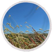 Wild Foxtail Grass In The Breeze II Round Beach Towel