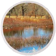 Wild Geese On The Farm Round Beach Towel