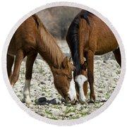 Wild Horses Grazing  Round Beach Towel
