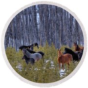 Wild Horses Of The Ghost Forest Round Beach Towel