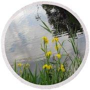 Wild Iris By The Pond Round Beach Towel by Ausra Huntington nee Paulauskaite