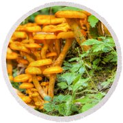Wild Mushrooms Round Beach Towel