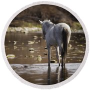 Wild Mustang On The River  Round Beach Towel