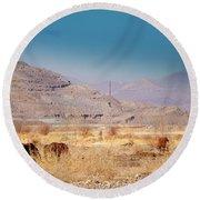 Wild Nevada Mustang Herd Round Beach Towel