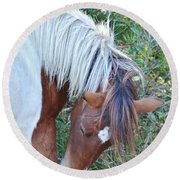 Wild Ponies Of Assateague 21 Round Beach Towel
