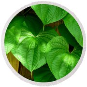 Wild Potato Vine Round Beach Towel