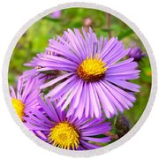 Wild Purple Asters Round Beach Towel