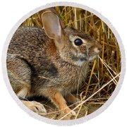 Wild Rabbit Round Beach Towel